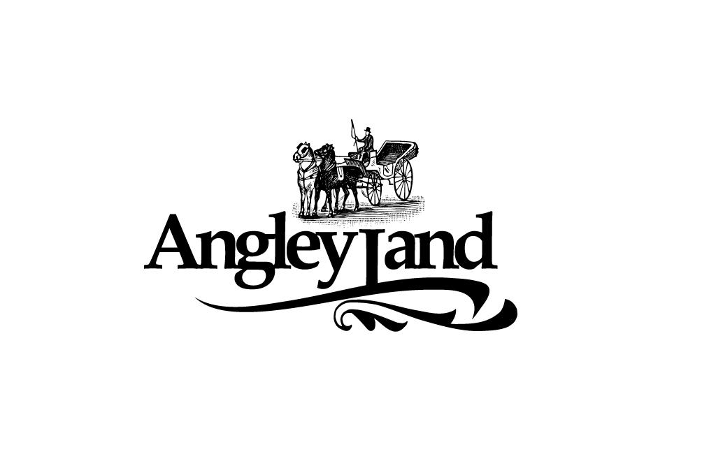 Фирменный стиль туристического агентства  Angley Land